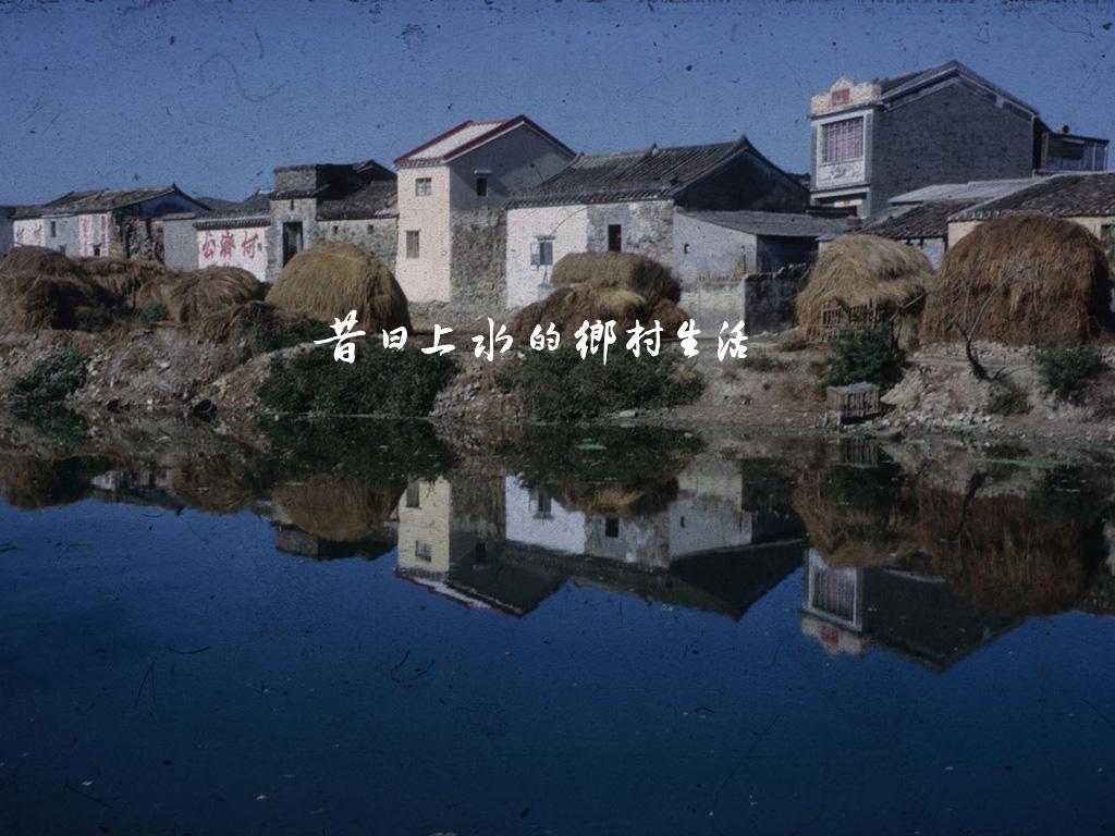 昔日上水的鄉村生活插圖